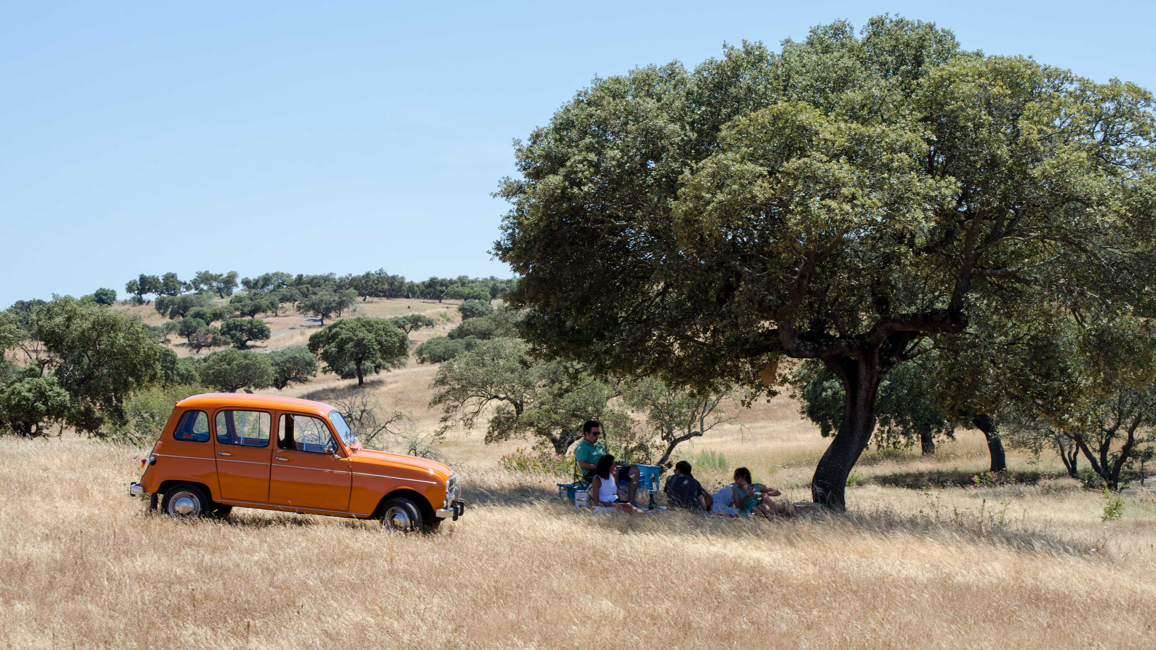 Group of people having a picnic under a tree and an orange Renault 4L