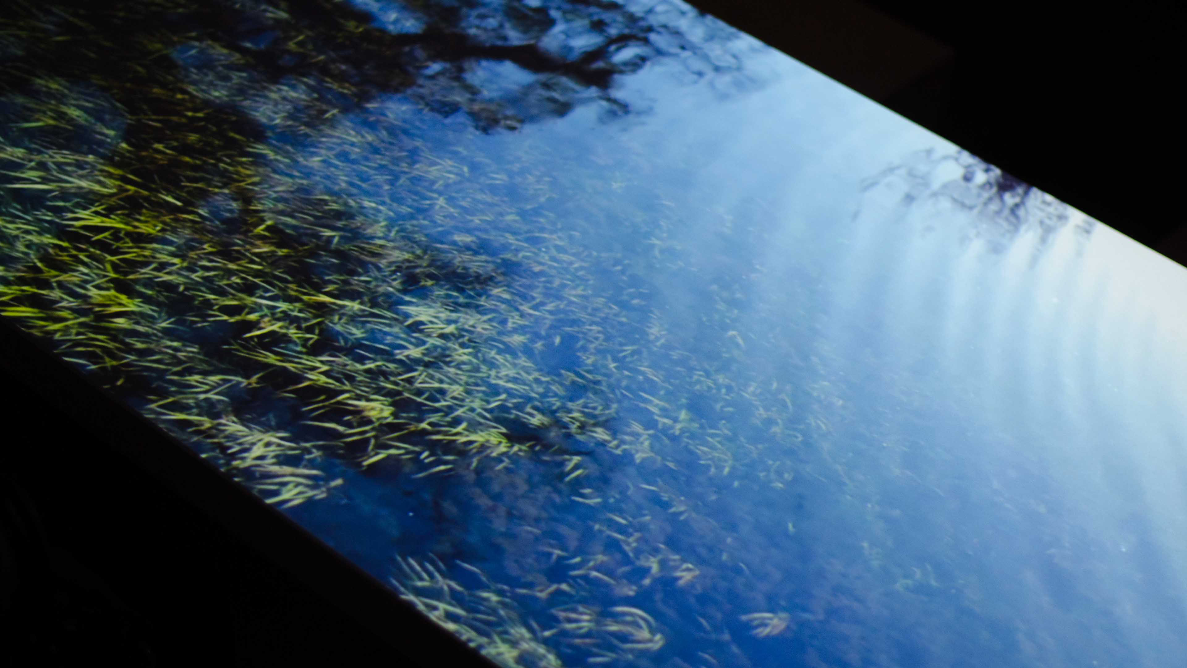 Water scape projected on a table
